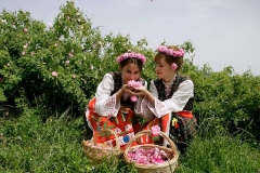 Bulgaria is considered to have the best climate and geographical disposition for cultivation of oil-yielding plants and production of the highest quality essential oils.